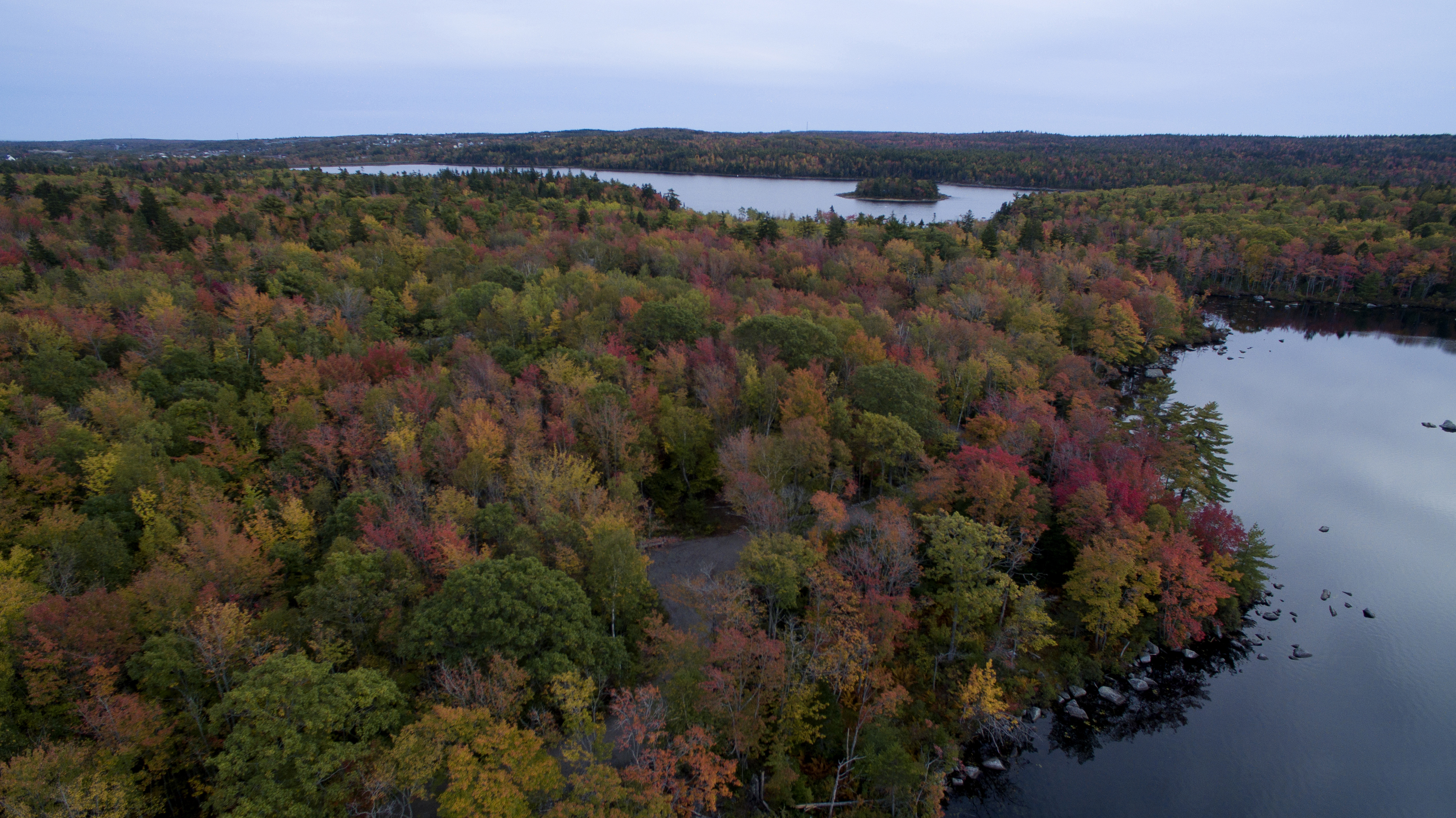 Long lake Park's Lakeview trail is in full fall colours this week. you can see Withrod Lake in the foreground and Long lake in the distance with Goat Island.