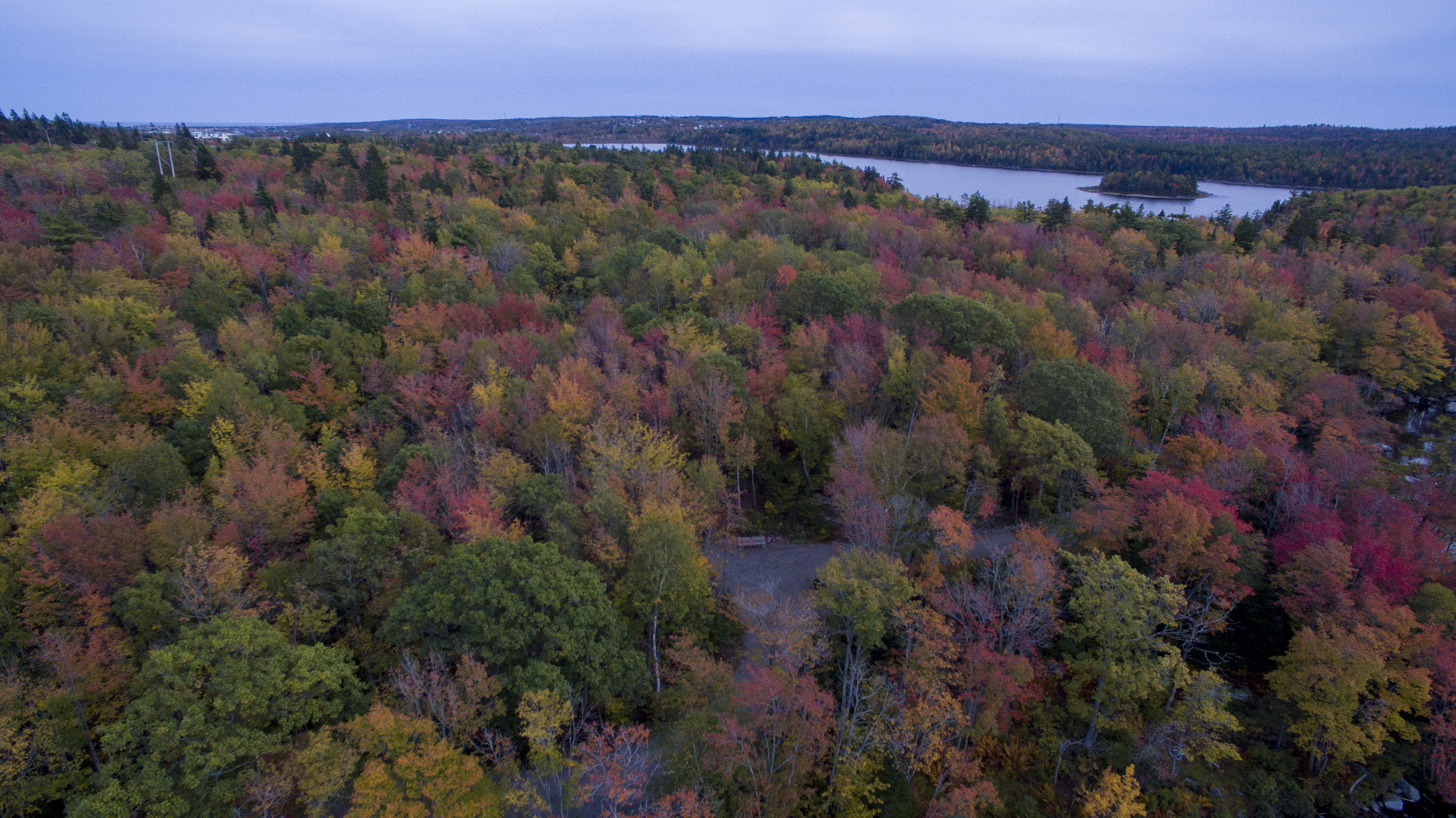 Long lake Park's Lakeview trail is in full fall colours this week. you can see  Long lake in the distance with Goat Island.