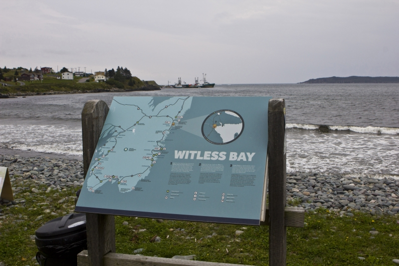 MH_WitlessBay_8053