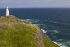 MH_CapeSpear_7819